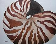 Sea Shell Originals - Nautilus by Bari Titen