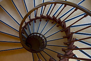 Wooden Stairs Prints - Nautilus Print by Debra and Dave Vanderlaan