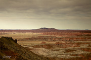 Travel Photographs Photos - Navajo Country by Phill  Doherty