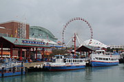 Deanna King - Navy Pier