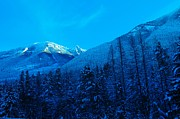 Blue Trees Prints - Near Fernie British Columbia  Print by Jeff  Swan
