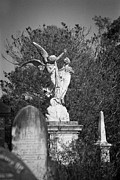 Cemetery Prints - Necropolis 01 Print by Colin and Linda McKie