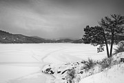 Nederland Posters - Nederland Colorado Barker Reservoir Winter View BW Poster by James Bo Insogna