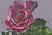 Needlepoint Framed Prints - Needlepoint Rose I Framed Print by Andi M Gerich