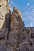 Needles Highway Prints - Needles Highway Print by Sara Edens