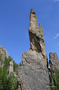 Needles Highway Framed Prints - Needles Highway Framed Print by Steve Javorsky