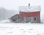 Red Barn In Winter Photos - Needs Work by Jack Zievis