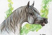 Horse Drawing Framed Prints - Neighing Grey Arabian Horse Painting  Framed Print by Angel  Tarantella