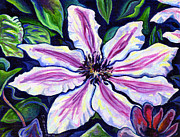 White Waterlily Paintings - Nelly Moser by Morgan  Ralston