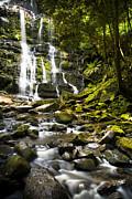 Tim Hester - Nelson Falls Tasmania