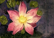 Hawai Painting Prints - Nelumbo Nucifera II Print by Melly Terpening