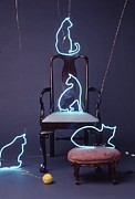 Mammals Glass Art Posters - Neon Cats Poster by Pacifico  Palumbo
