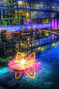 Neon Lilypad Print by Dan Stone