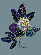 Passionflower Digital Art Posters - Neon Passiflora Poster by Sarah Stone