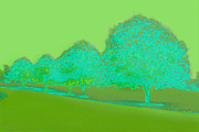 Karen Adams Prints - Neon Trees Green Print by Karen Adams