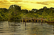 Dunks Metal Prints - Neshaminy State Park Metal Print by Gallery Three