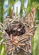 Kristin Maija Peterson - Nesting In The Reeds