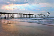Pier Mixed Media - Nesting on Broken Dreams - Outer Banks by Dan Carmichael