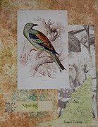 Nature Study Prints - Nesting Print by Tamyra Crossley