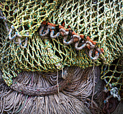 Nosyreva Metal Prints - Nets And Knots Number Three Metal Print by Elena Nosyreva