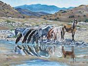 Melody Perez - Nevada Reflections