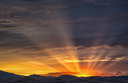 Nevada Sunset Print by Janis Knight