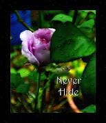Eva Thomas - Never Hide