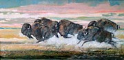 Bison Mixed Media Prints - Never Too Late  Print by Vincent Vonfrese