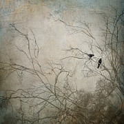 Textures Photo Metal Prints - Nevermore... Metal Print by Amy Weiss