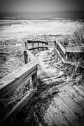 Wooden Stairs Metal Prints - New Buffalo Michigan Boardwalk and Beach Metal Print by Paul Velgos