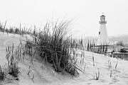 Dune Framed Prints - New Buffalo Michigan Lighthouse and Beach Grass Framed Print by Paul Velgos