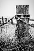 Michigan Prints - New Buffalo Michigan Wooden Post and Rope Print by Paul Velgos