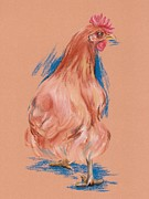 Plumage Pastels - New Hampshire Red Hen by MM Anderson