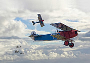 Biplane Framed Prints - New Kid on the Block Framed Print by Pat Speirs