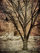 Corvid Prints - New Mexico Winter Print by Carol Leigh