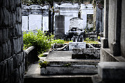 Lafayette Originals - New Orleans Cemetery by John Gusky