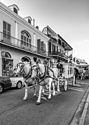 Quarter Horses Posters - New Orleans Funeral monochrome Poster by Steve Harrington