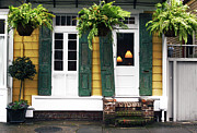 House Plants Framed Prints - New Orleans Row House Framed Print by John Rizzuto