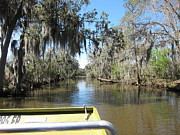 Ride Prints - New Orleans - Swamp Boat Ride - 1212123 Print by DC Photographer