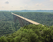 Elevated Element - New River Gorge