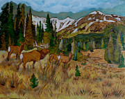 Mountain Pyrography Originals - New Suitor by Mike Holder