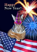 Wildlife Celebration Digital Art - New Years Bunny Rabbit by Jeanette K