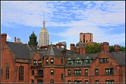 Desmond Prints - New York City - A View from the Highline Print by Dora Sofia Caputo