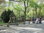 Carriage Photo Posters - New York City - Central Park - 12129 Poster by DC Photographer
