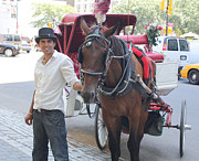 New York City Horse And Carriage Print by John Telfer