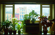 New York City Photos - New York City windowsill 1 by Frank Tozier