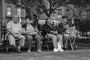 Old Person Prints - New York Park  Print by John McGraw