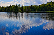 Fir Trees Photos - New Yorks Lake Abanakee by David Patterson