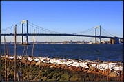 New York's Throgs Neck Bridge Print by Dora Sofia Caputo