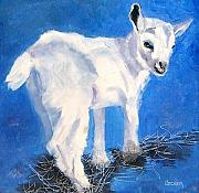 Goat Drawings Posters - Newborn Kid Poster by Susan A Becker